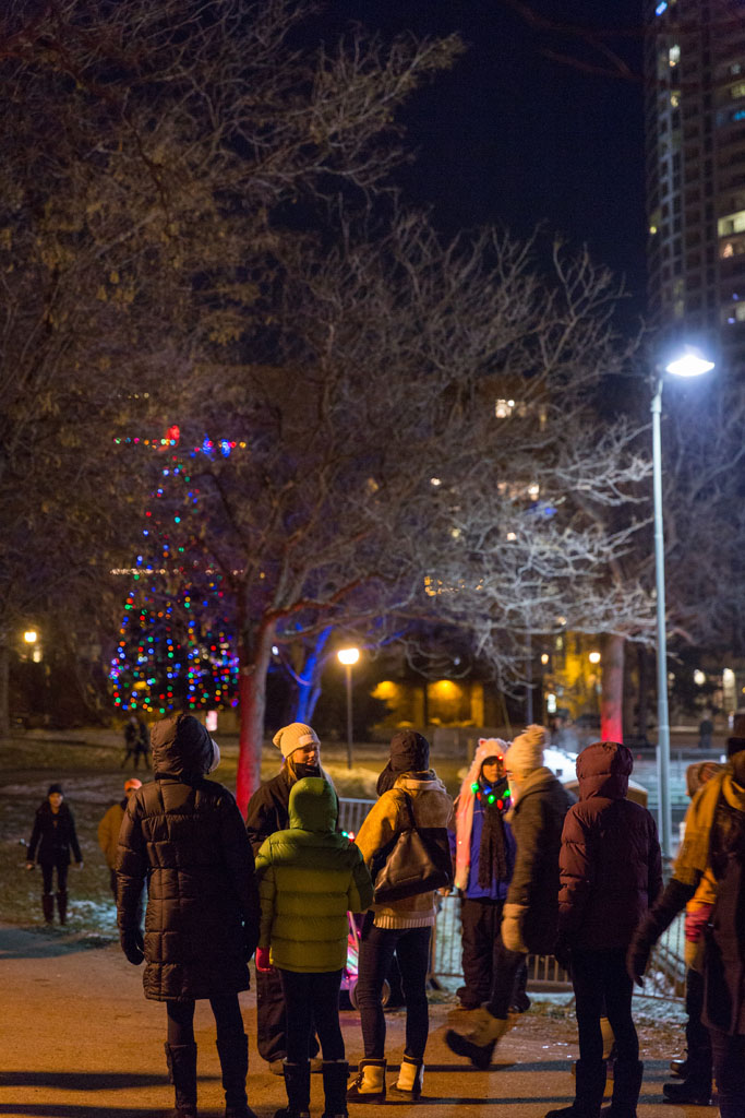 _D3_77062015_Holidazzle_Minneapolis-